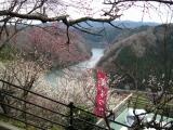 帆浦梅林より名張川上流の景色